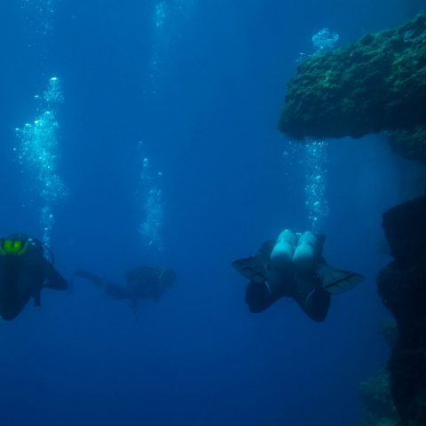 A Trio of Divers Swimming in the Adriatic Sea off Croatia