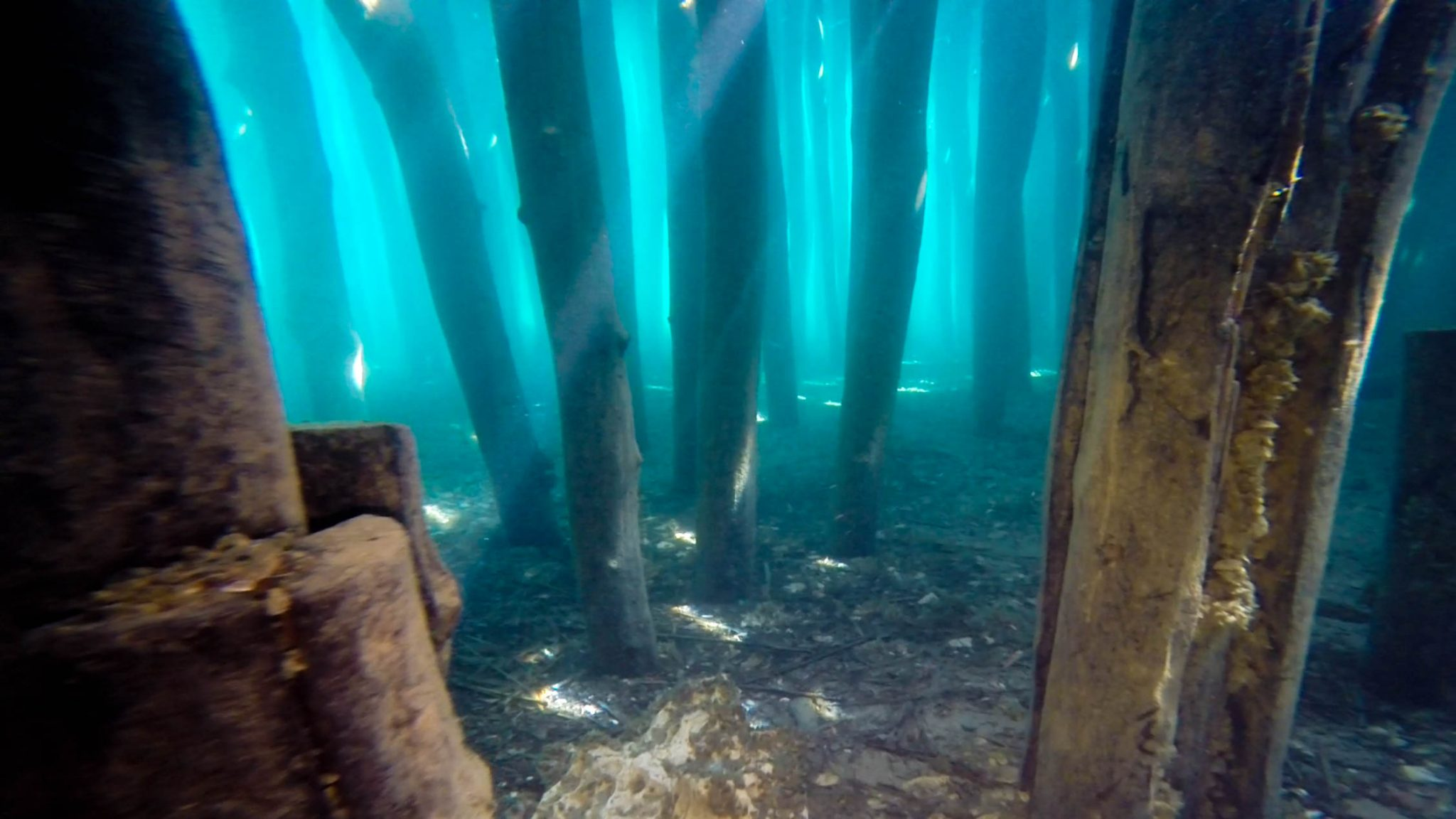 A Close Up Of The Bay Of Bones Columns Seen While Scuba Diving