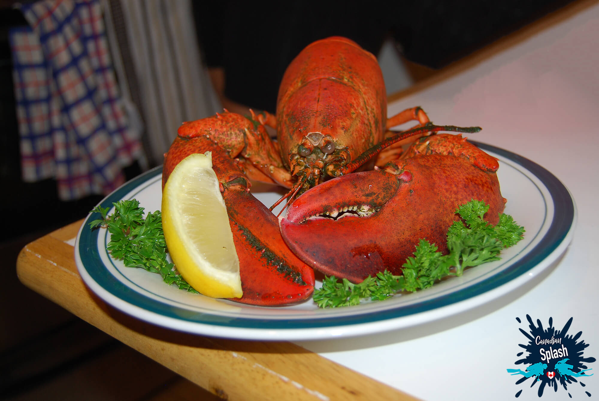 A Cooked Lobster Dinner In Halifax, Nova Scotia