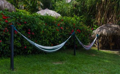 A Couple Of Hammocks