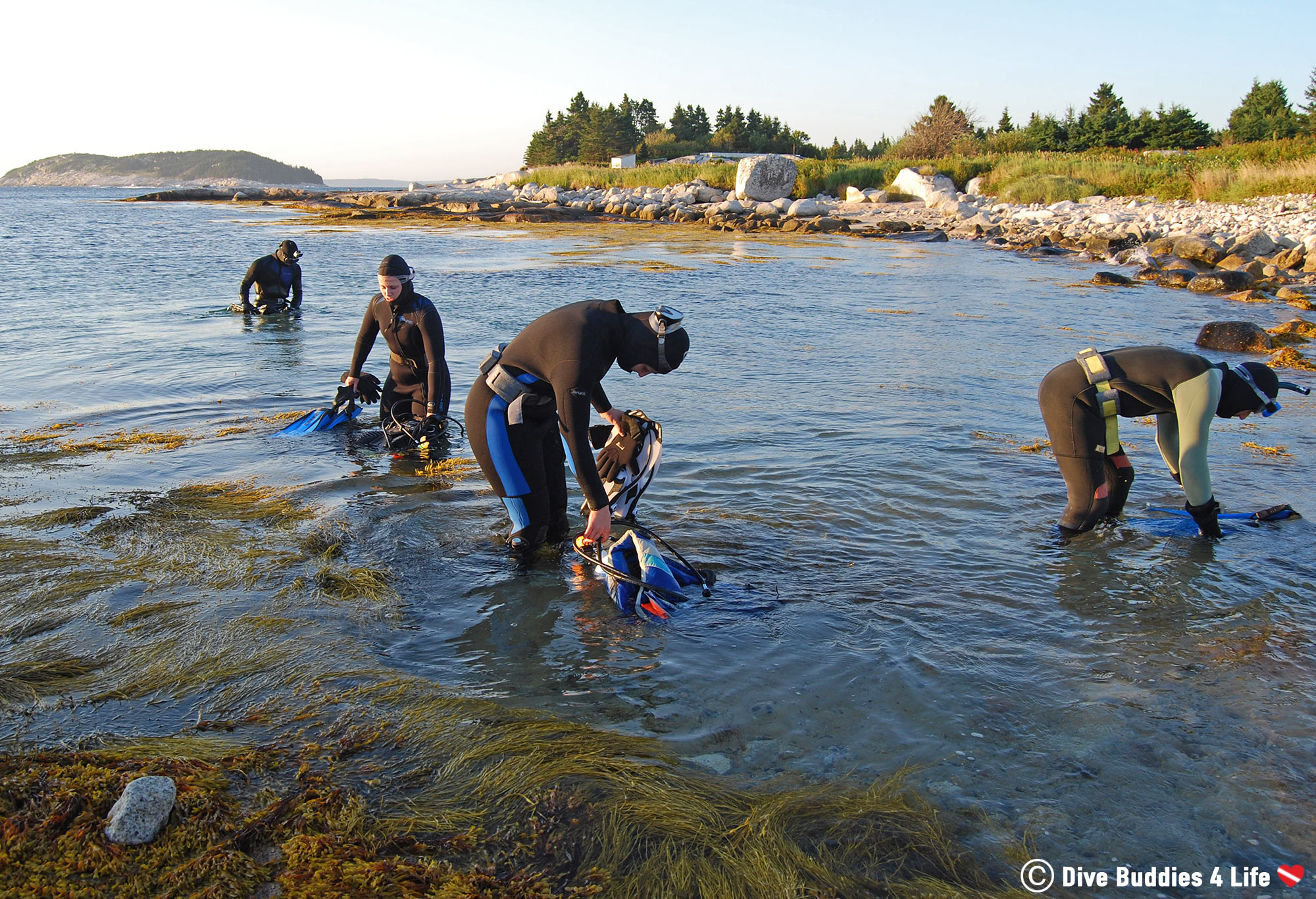 A Group Of Cold Water Canadian Scuba Divers Getting Ready To Dive