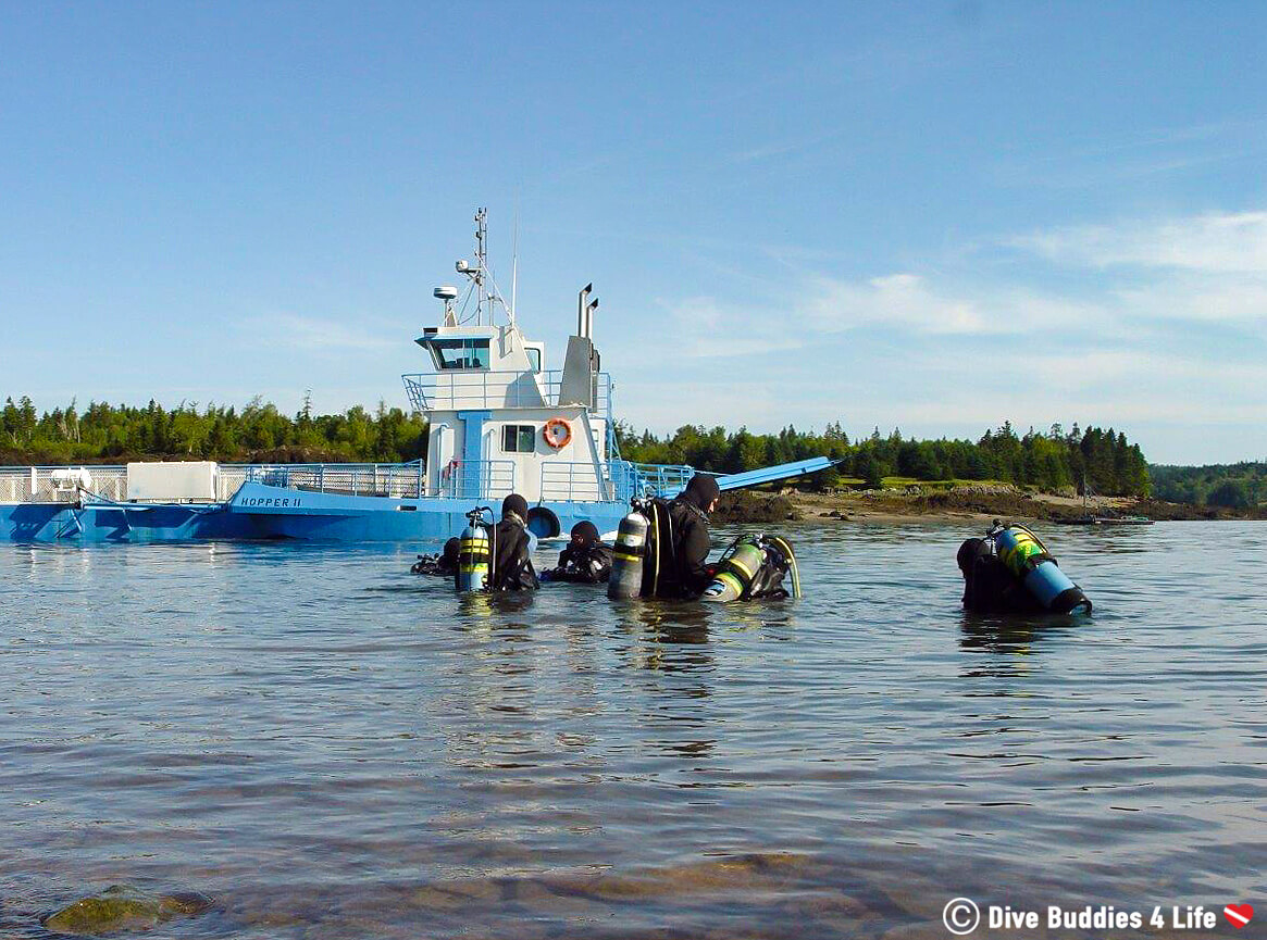A Group Of Cold Water Scuba Divers In The Bay Of Fundy, New Brunswick Doing Their Advanced Open Water Scuba Course In Canada