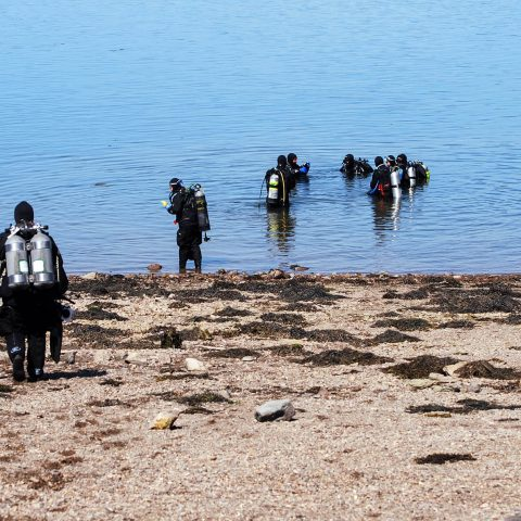 A Group Of Scuba Divers Heading Into The Water At Cancat Beach On Deer Island, New Brunswick, Canadian Splash Scuba Diving
