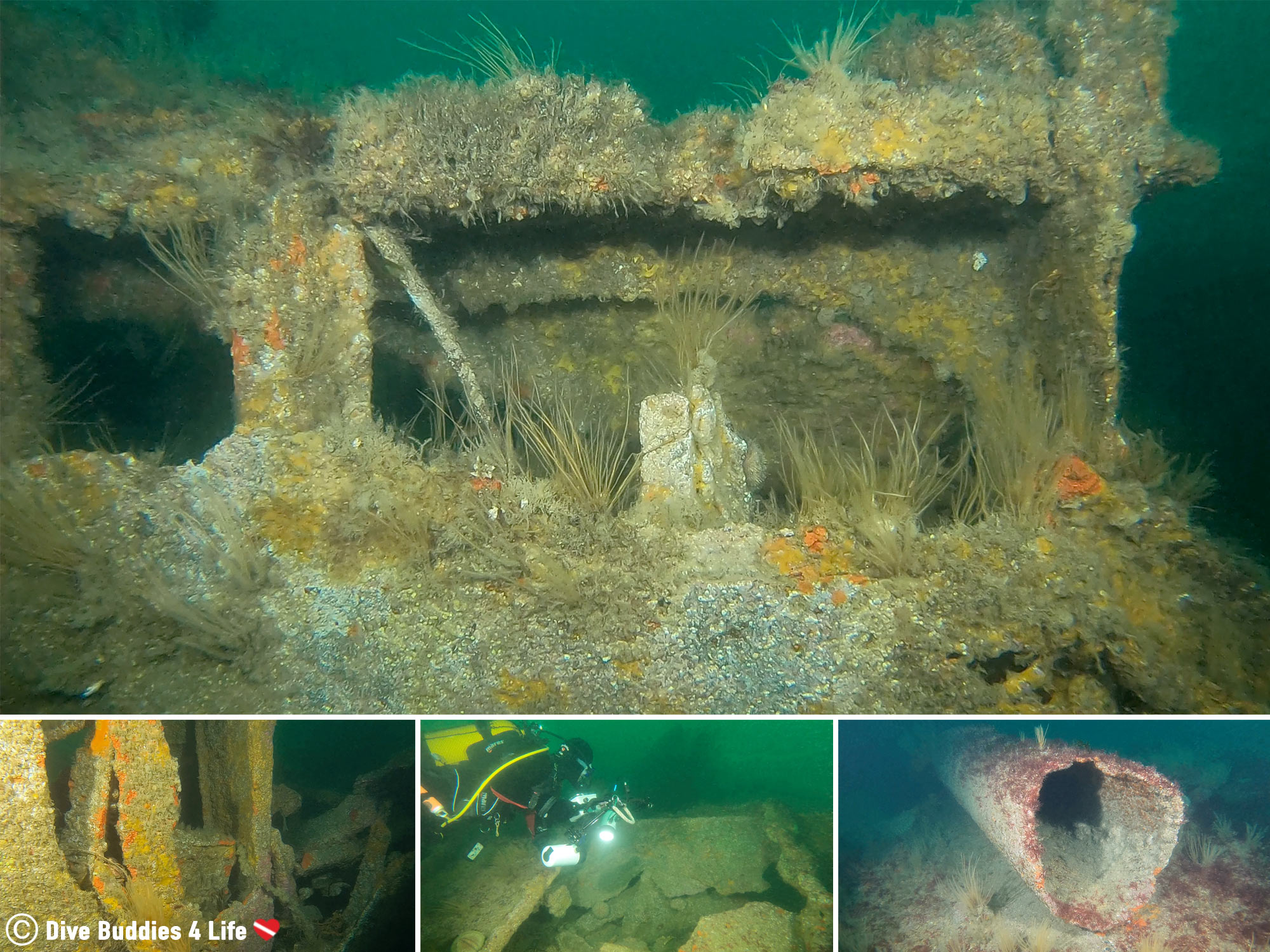 The Marine Life Covered Shipwreck In Brest, Scuba Diving France, Europe