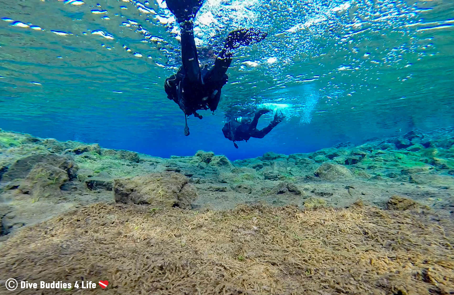 A Pair Of Scuba Divers Finning Over The Muddy Bottom Of The Clearest Dive Site In The World, The Silfra