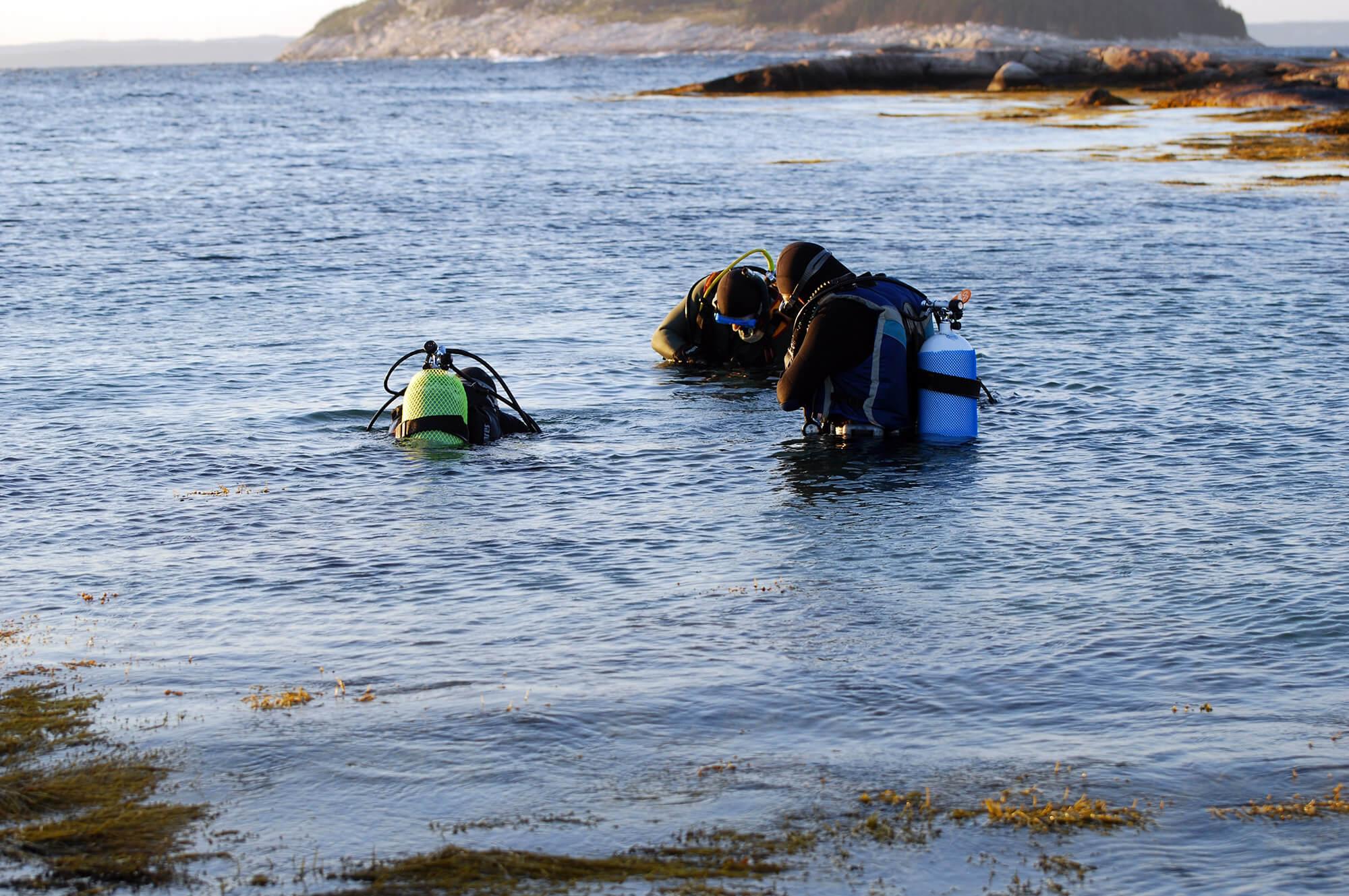 A Trio Of Scuba Divers In The Cold Water Close To Halifax, Nova Scotia In Canada