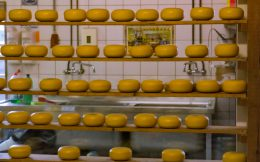 A Wall Of Cheese Wheels In The Netherlands