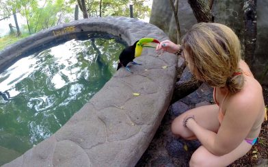 Ali Playing with the Toucan on the Tour