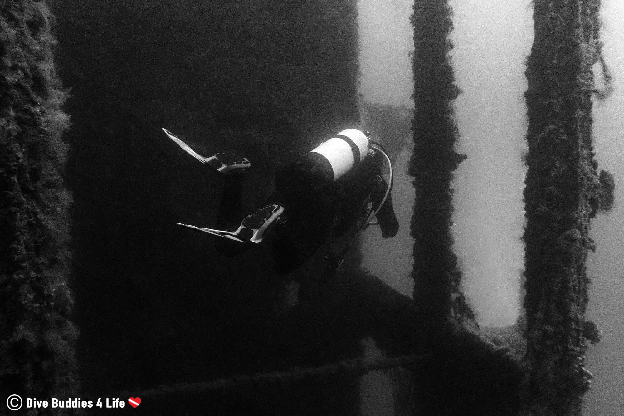 Ali Scuba Diving Through The Massive Albanian Shipwreck In Sarandë, Europe