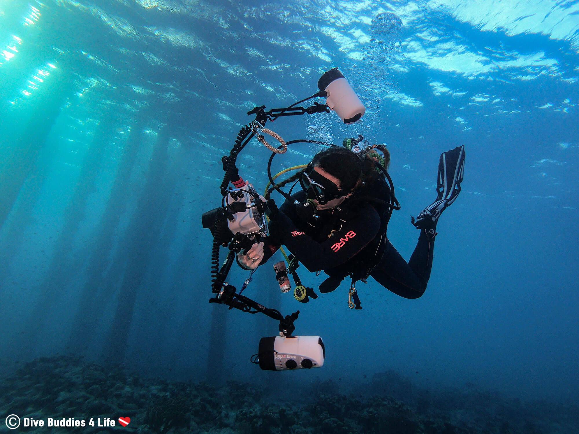 Ali Scuba Diving With Her Underwater Camera At Salt Pier Dive Site, Bonaire, Caribbean