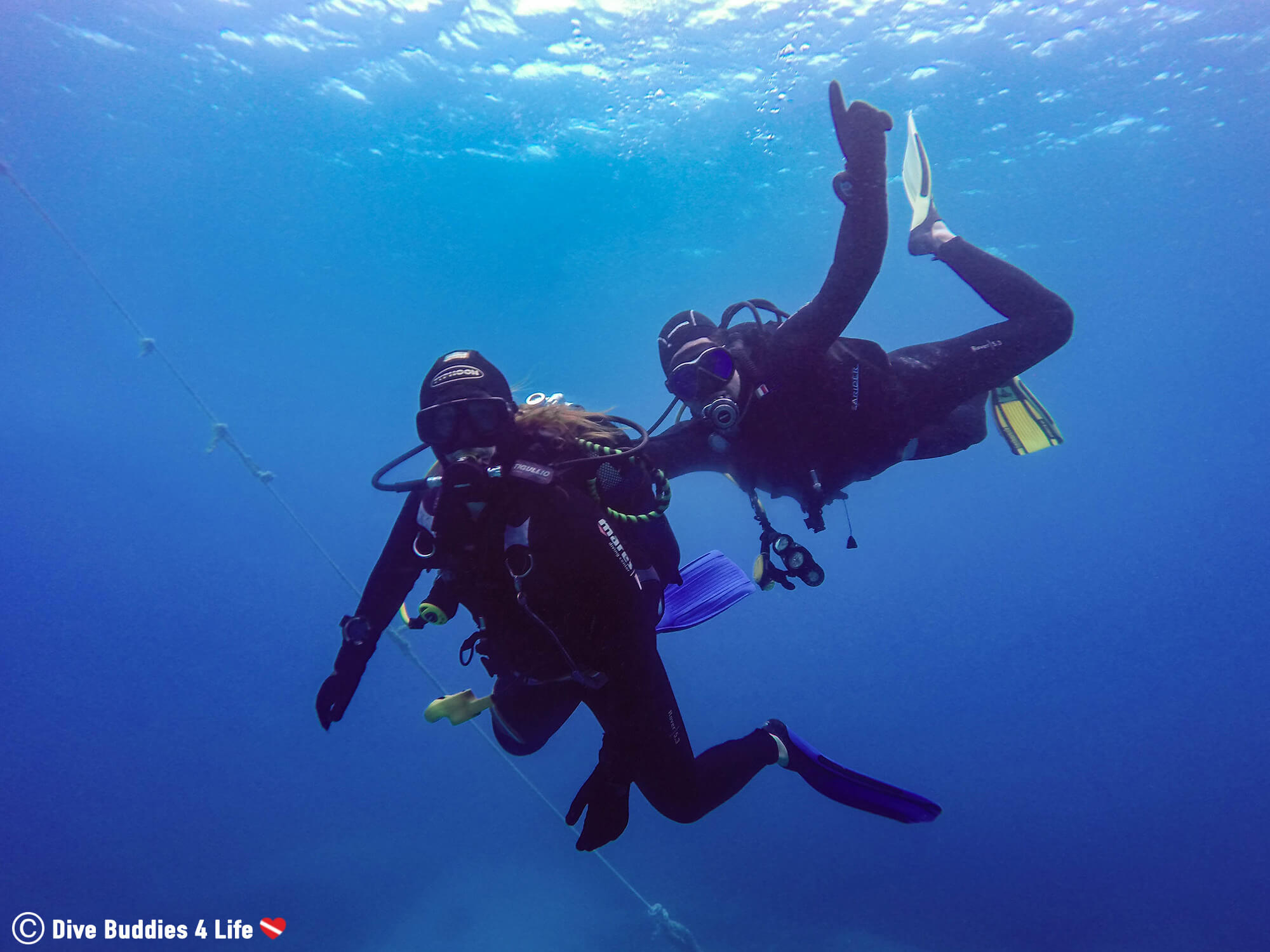 Ali And Joey Scuba Diving Together In An Attempt To Encourage More People To Protect The Worlds Oceans