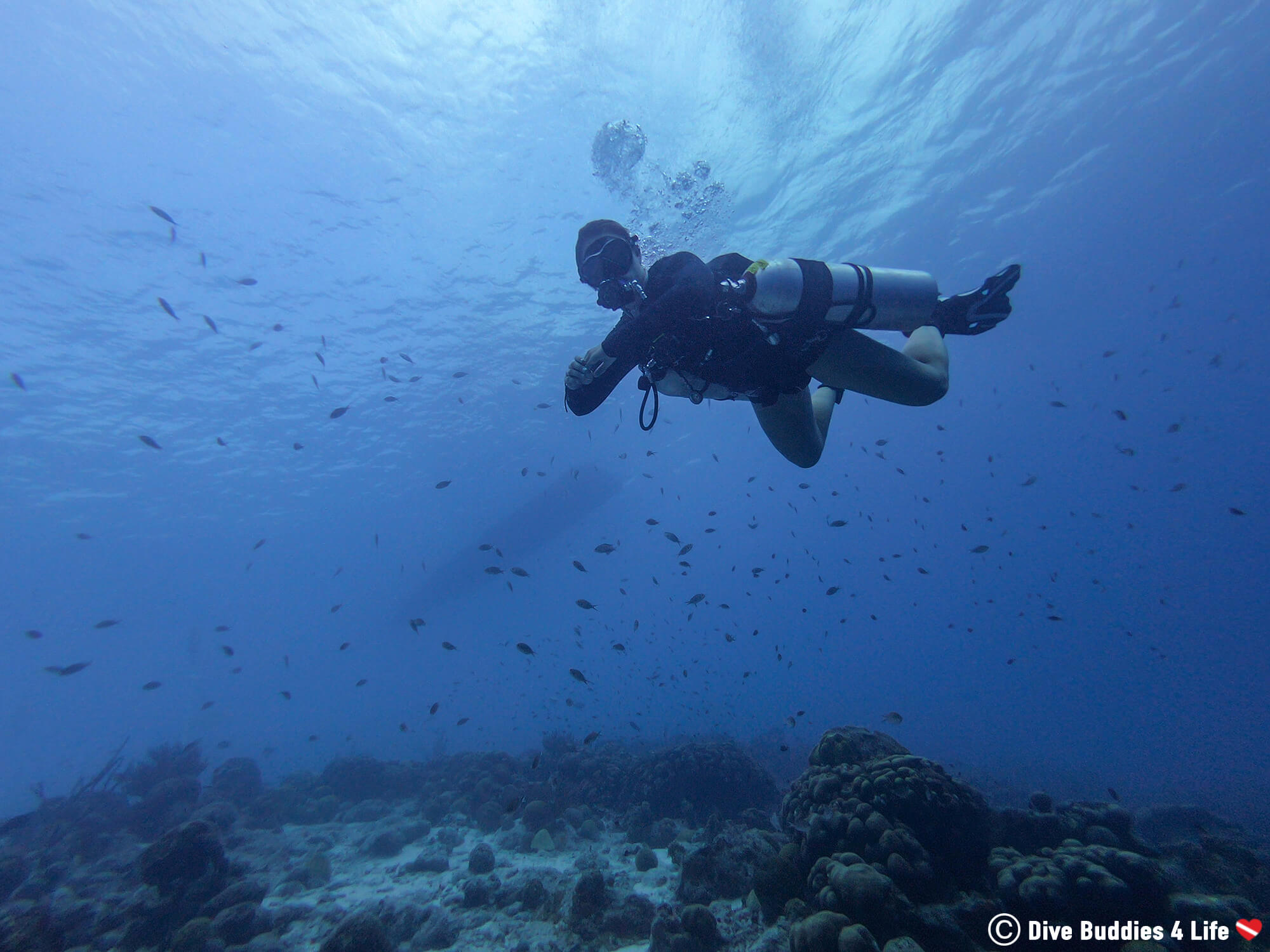 Ali On Buddy Dive's Coral Reef With Sidemount Gear During Bonaire TeK Week, Dutch Caribbean
