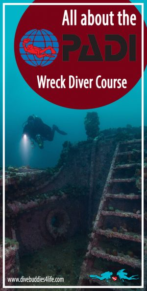 All About The PADI Wreck Diver Course Dive Buddies Scuba School