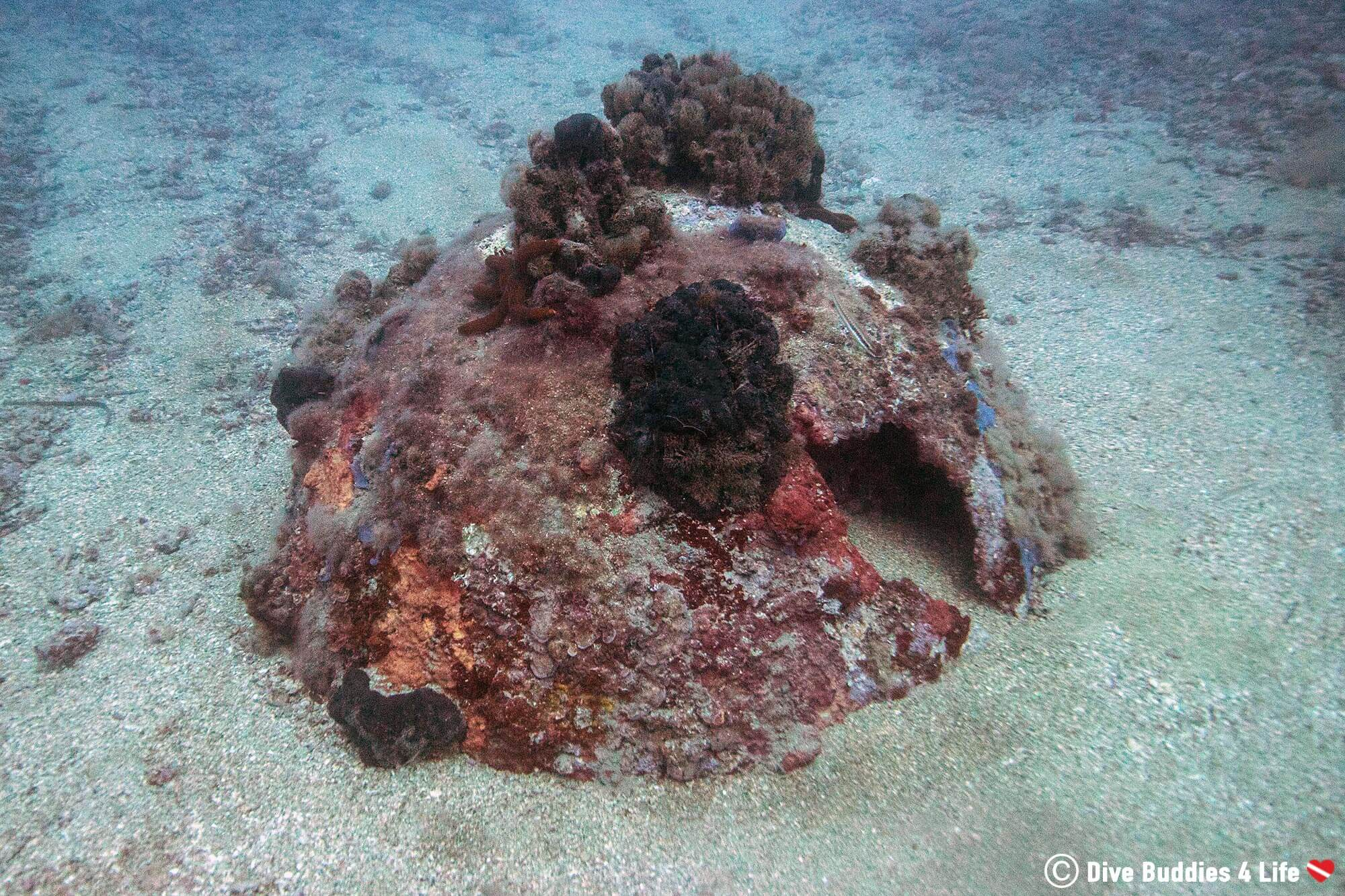 An Underwater Mine Buried In The Sand Of Budva, Montenegro, Balkan Countries
