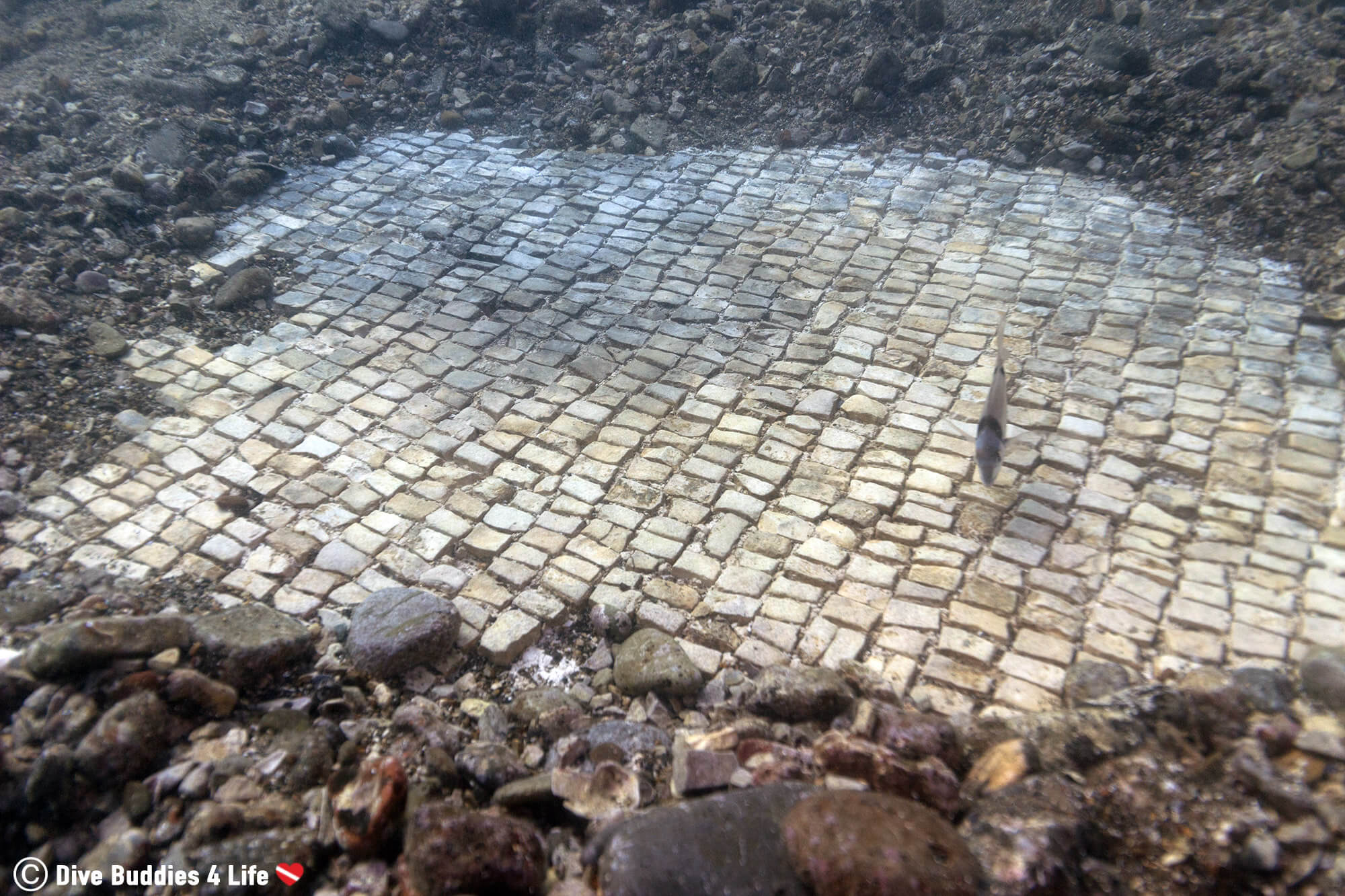 Another View Of Some Floor Mosaic From The Ancient Submerged City Of Baiae In Naples, Italy, Europe