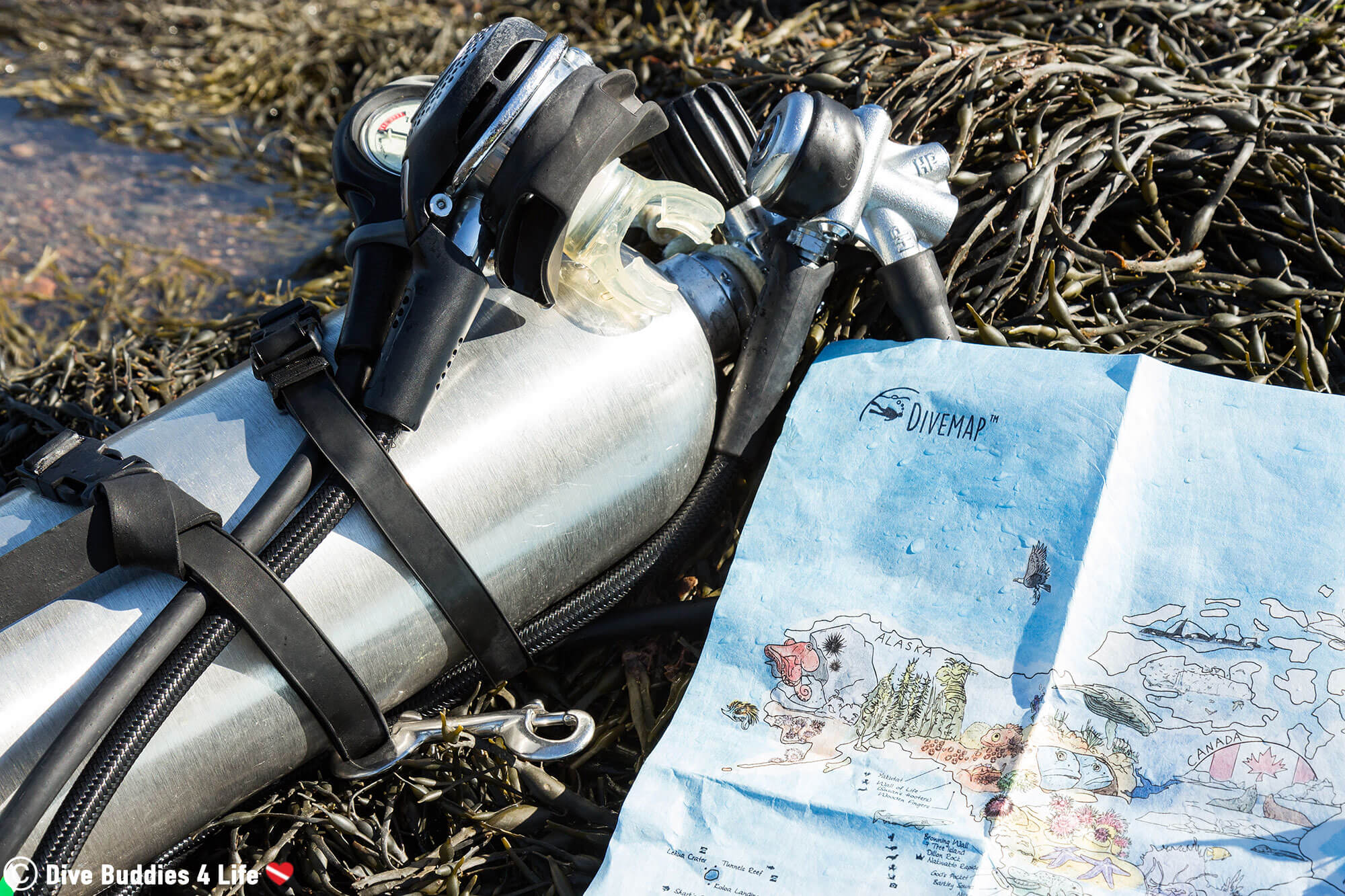 Awesome Maps World Scuba Diving Map And Pony Bottle