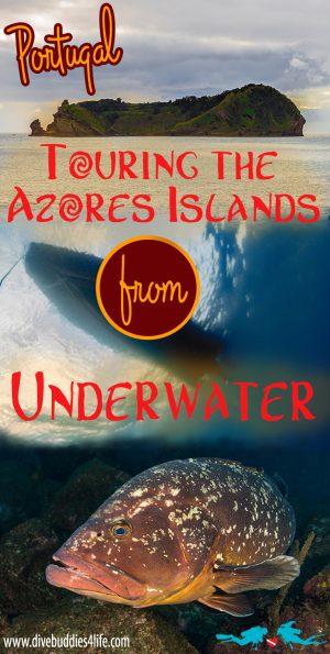 Azores Islands Pinterest