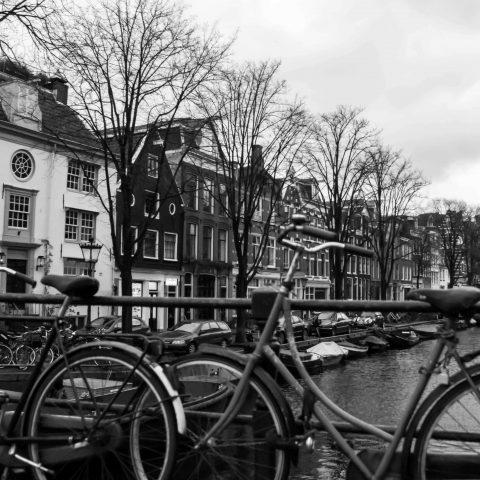 Amsterdam Black and White Bikes
