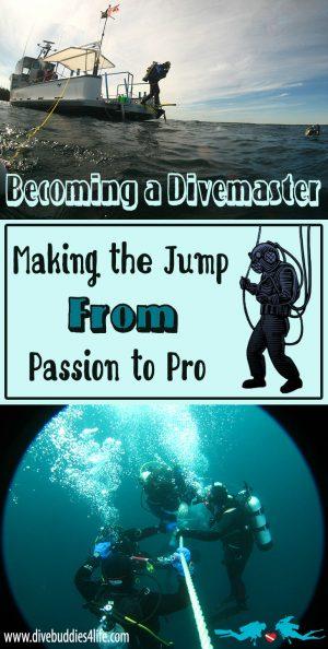 Becoming A Divemaster