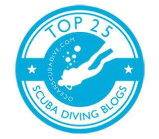 Best Scuba Blogs Blue Ocean Dive