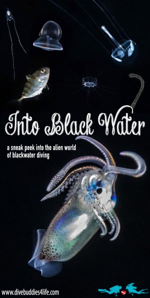 Blackwater Diving's Alien World Pinterest