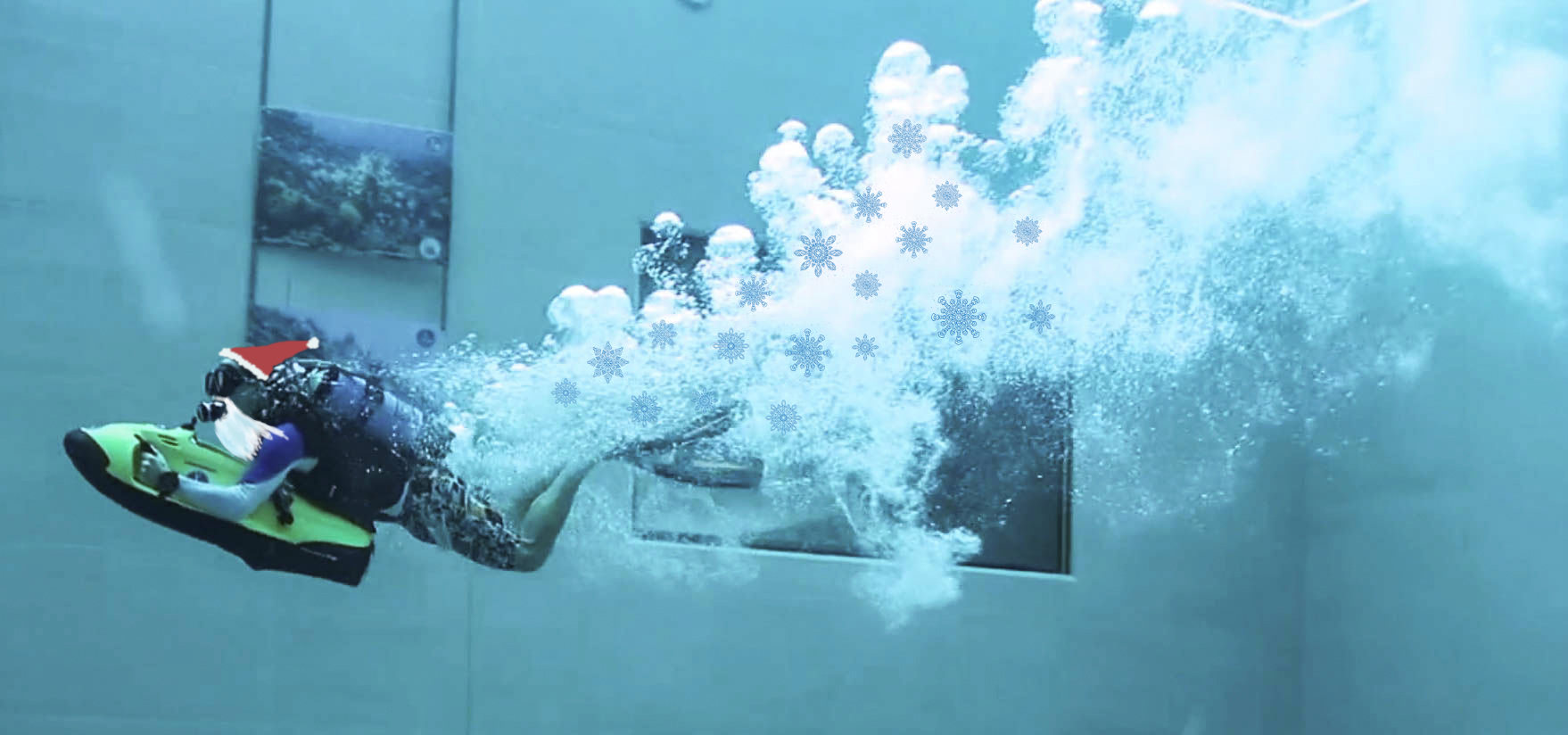 The Scuba Diver Advent Activity Calendar | Dive Buddies 4 Life