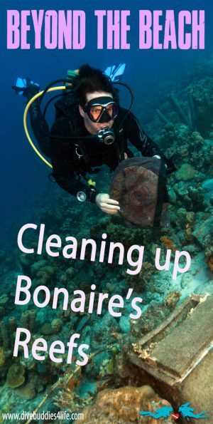 Cleaning Up Bonaire's Reefs Pinterest