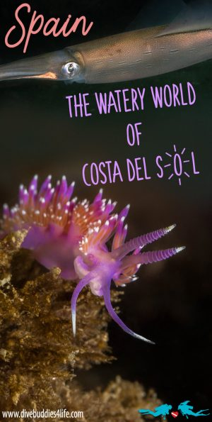 Costa Del Sol Diving Pinterest