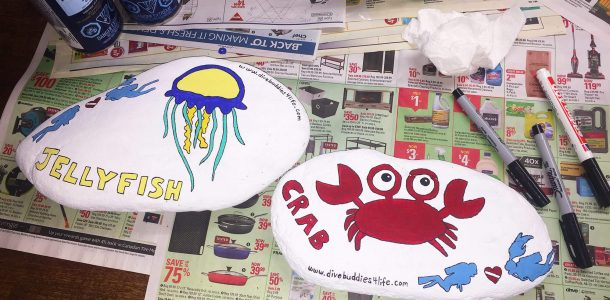 Crab And Jellyfish Rock Art For Scuba Diving Sites