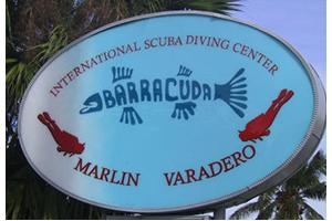 Barracuda Diving Logo