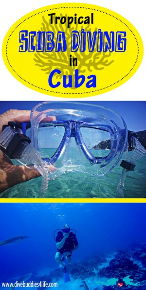 Cuba Scuba Diving Pinterest