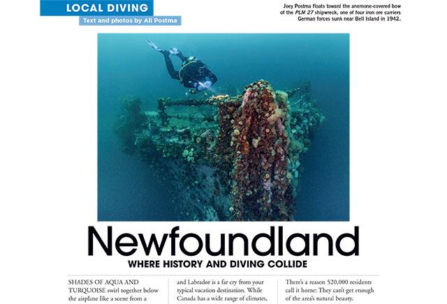 DAN Local Diving In NFLD