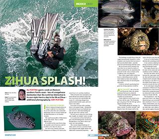 DIVER Mag Britan Zihua Splash November 2020 Publication