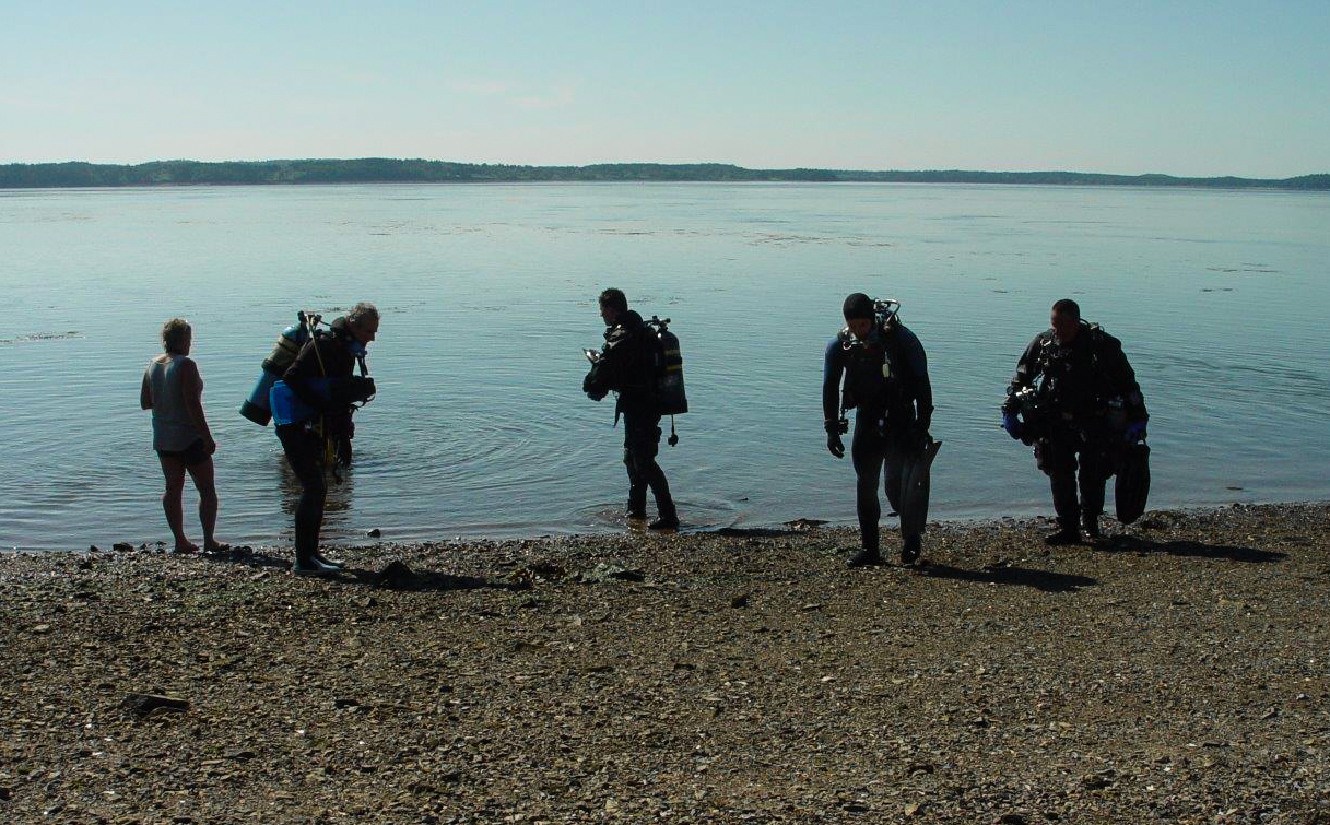 Five Scuba Divers Exiting the Water at the End of Deer Island's Drift Dive