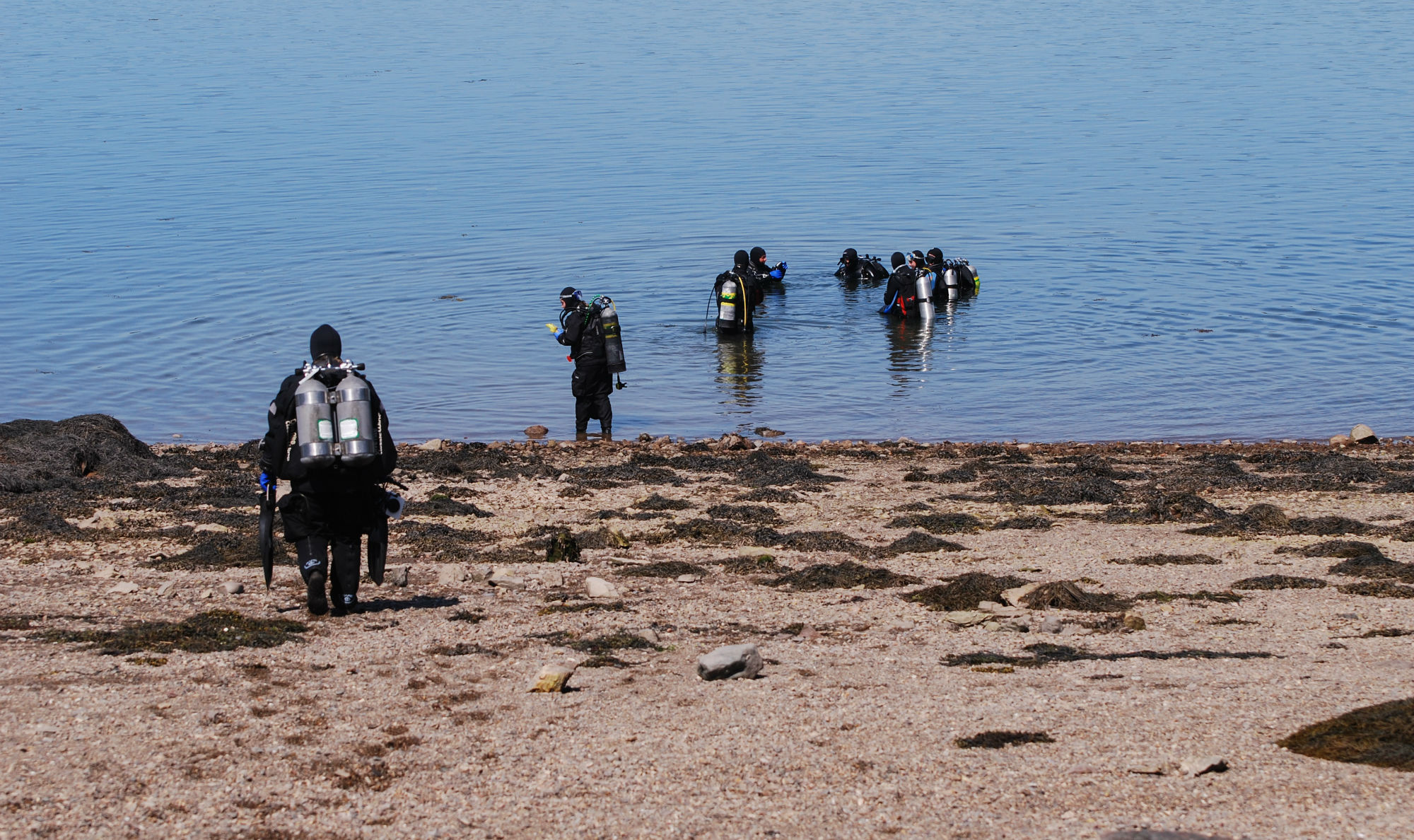 Some Scuba Divers Entering the Bay of Fundy at Cancat Beach, Deer Island