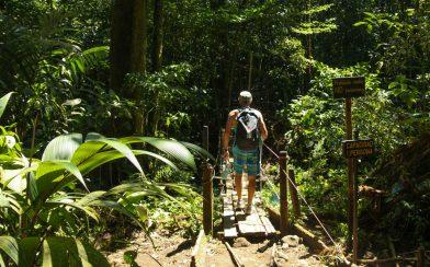 Dad Braving the Old Bridge at the Rio Celeste