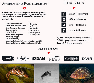 Dive Buddies Media 2021 Page 3
