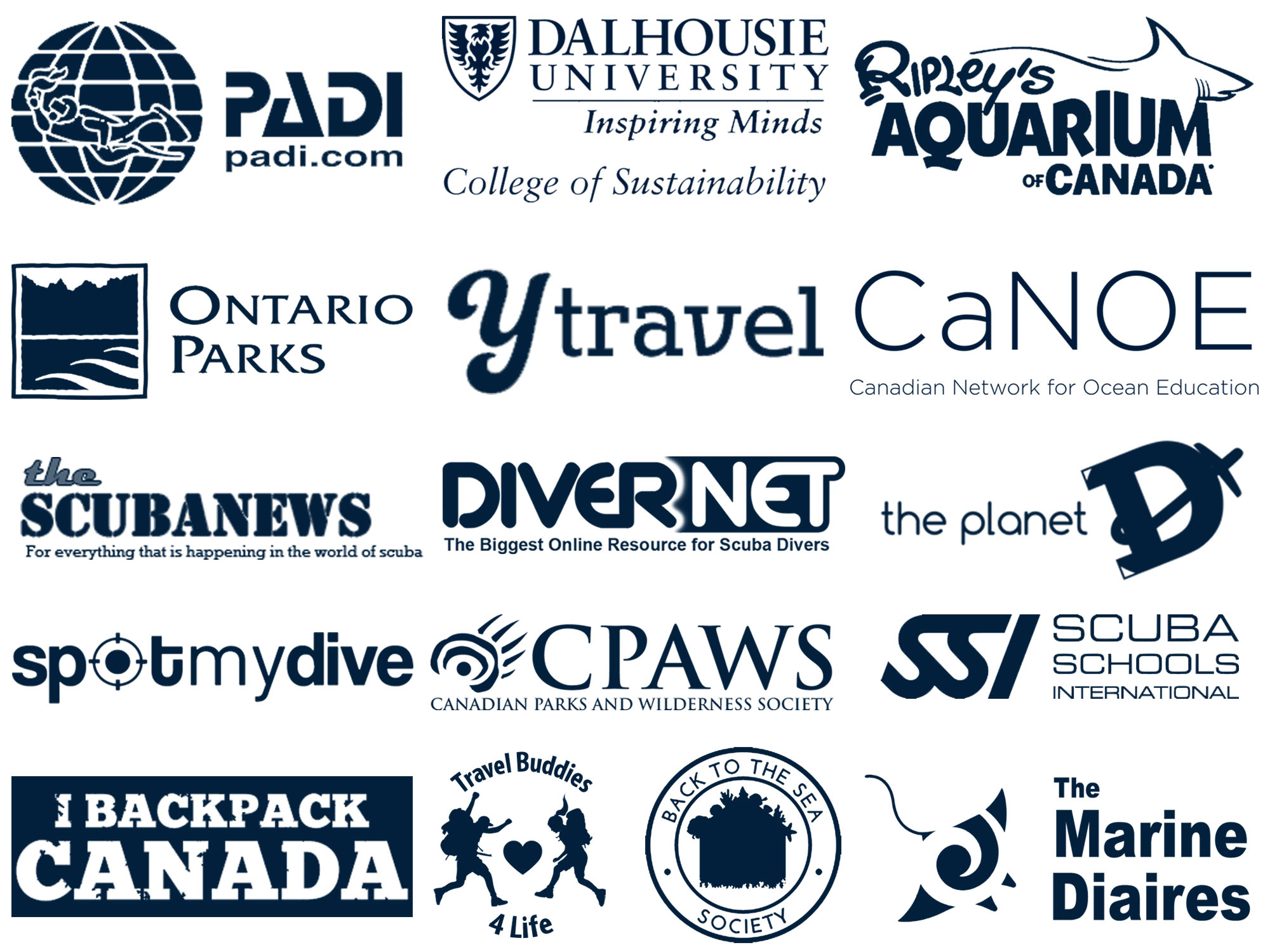 Dive Buddies Partner Feature And Collaborations