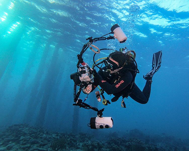 Dive Buddies Shop Underwater Housings