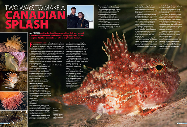 Diver Magazine UK Two Ways To Make A Canadian Splash