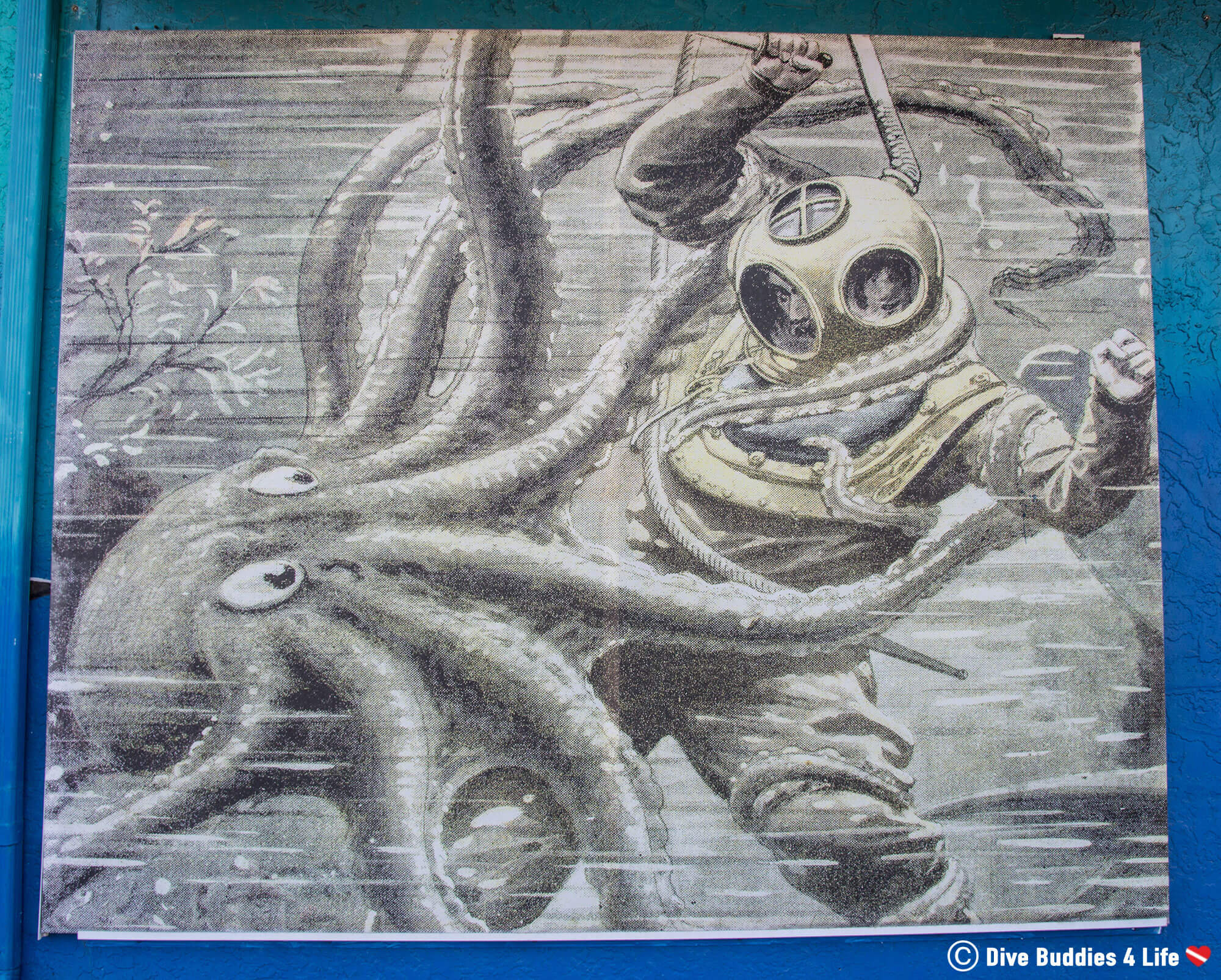 Diver And A Octopus On The History Of Diving Museum In Florida