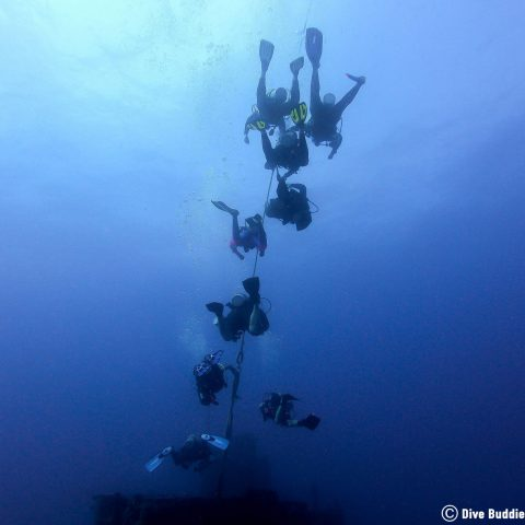 Divers Hanging on in the Current Diving The Duane Florida Key Shipwreck in Key Largo, USA