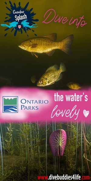 Diving Into Ontario Parks, Canadian Splash, Scuba Diving Canada