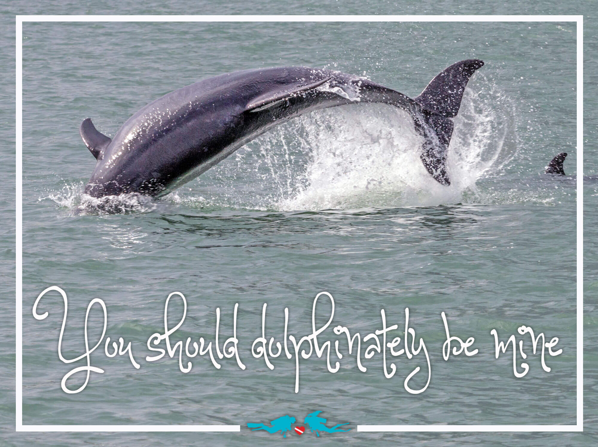 Dolphin Scuba Diving Valentine's Day Quote