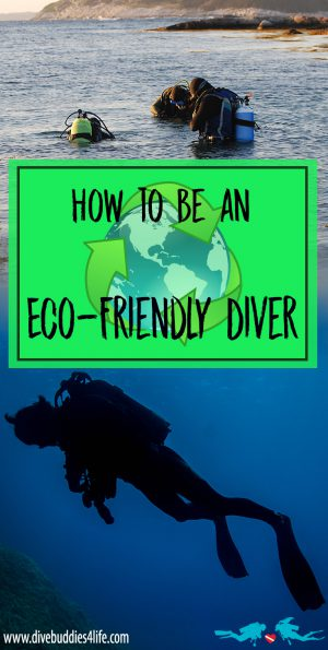 How to be an Eco Friendly Diver Pinterest