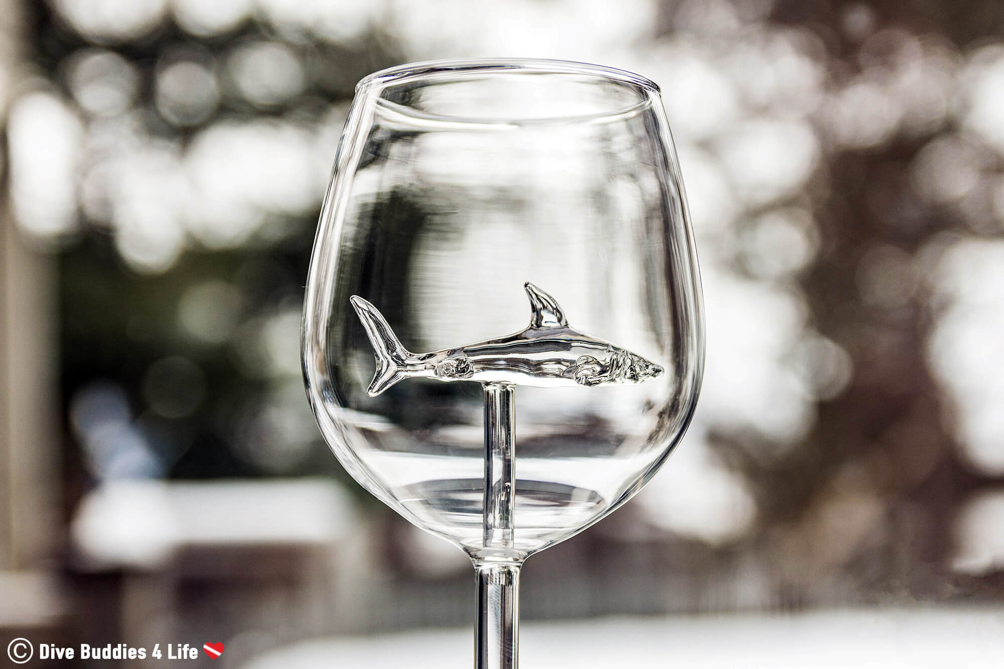 Empty Shark Wine Glass, Canada