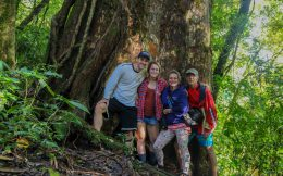 The Family with the Biggest, Beastliest Tree in the Rainforest