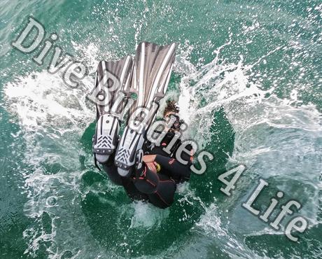Female Scuba Diver Back Rolling Into The Water Scuba Shop 4