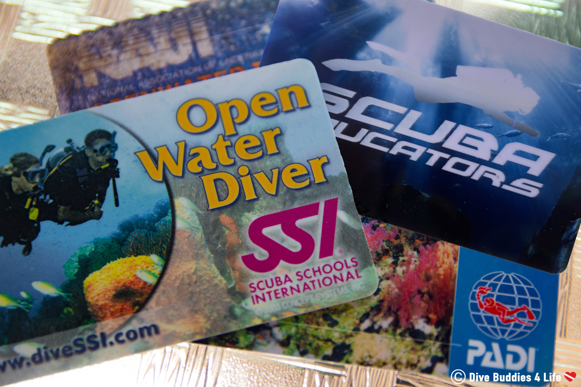 Four Scuba Diving Certification Agencies SEI, PADI, NAUI And SSI