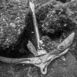 Scuba Joe Diving with a Boat Anchor in the Azores